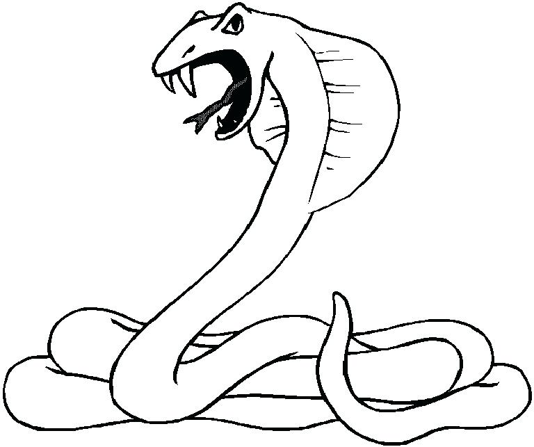 768x643 Ball Python Coloring Page At Snake Coloring Page