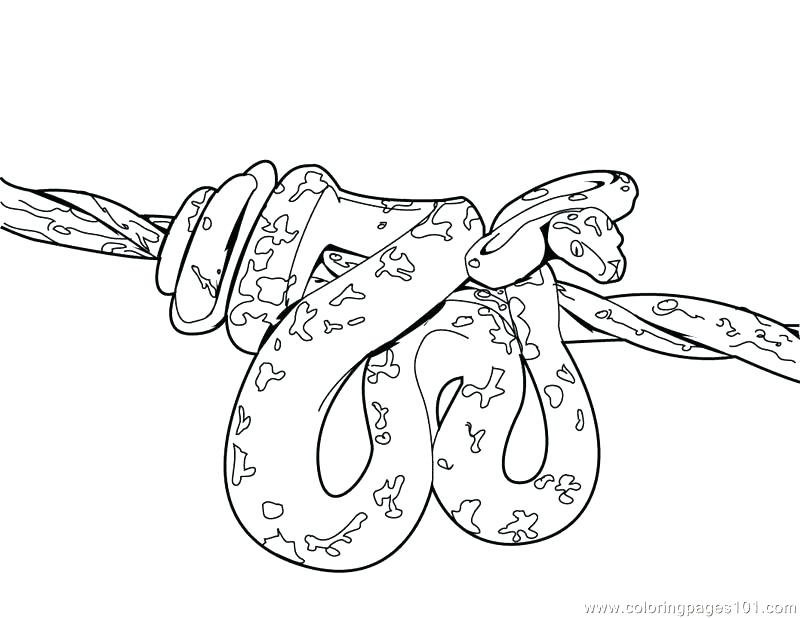800x618 Pixie Coloring Pages Colouring Page Pop Cherie Coloring Collection