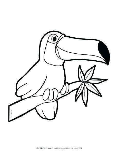 460x597 Rainforest Animal Coloring Pages Elegant Animals Coloring Pages