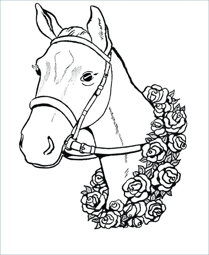 670x820 Horse Head Coloring Page Dog Head Coloring Pages Quarter Horse