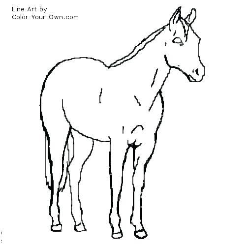 500x500 American Quarter Horse Coloring Pages Fuhrer Von