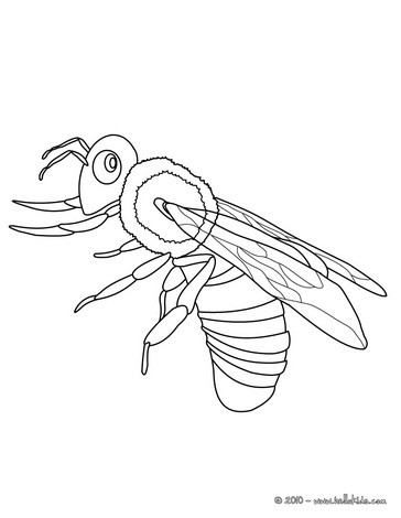 Queen Bee Coloring Page