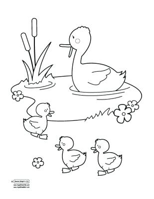 309x400 Duck Pond Coloring Page Quiet Book Ideas Duck Pond Duck Pond