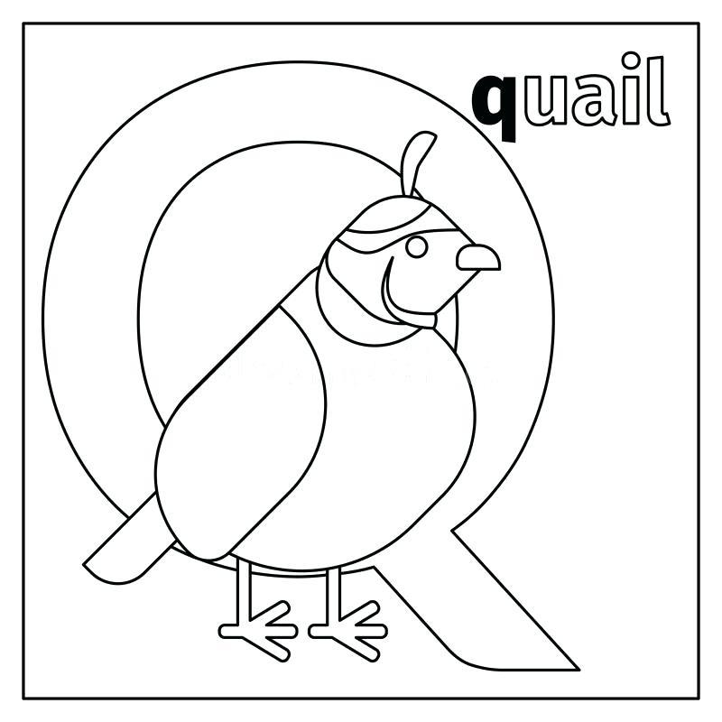 800x800 Coloring Pages For Kids Online Alphabet Letter Q For Quiet