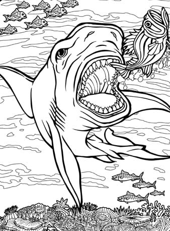 338x458 Quiver Coloring Pages Dover Vol Archives Quiver