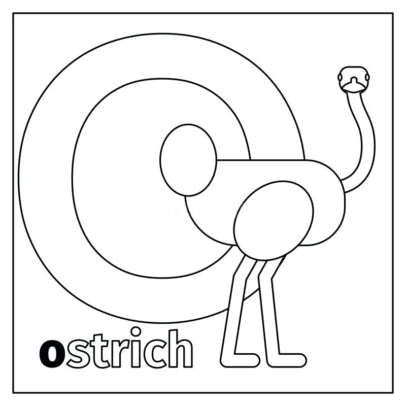800x800 Letter O Coloring Download Ostrich Letter O Coloring Page Stock