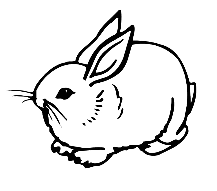 750x661 Cute Bunny Rabbit Coloring Page