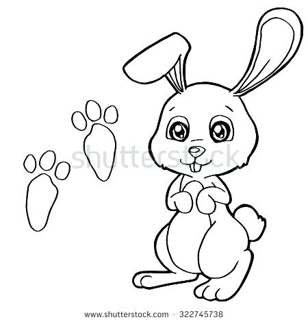 450x470 Peter Rabbit Colouring Pages To Print Kids N Coloring