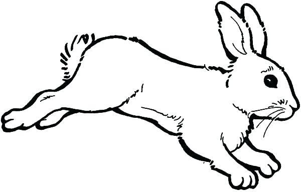 600x383 Printable Bunny Coloring Pages Bunny Coloring Page Bunny Color