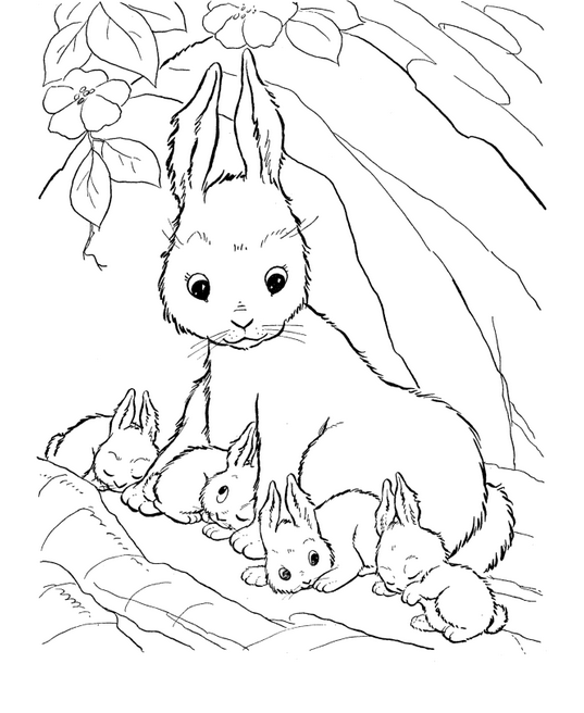 537x656 Rabbit Coloring Page Coloring Book