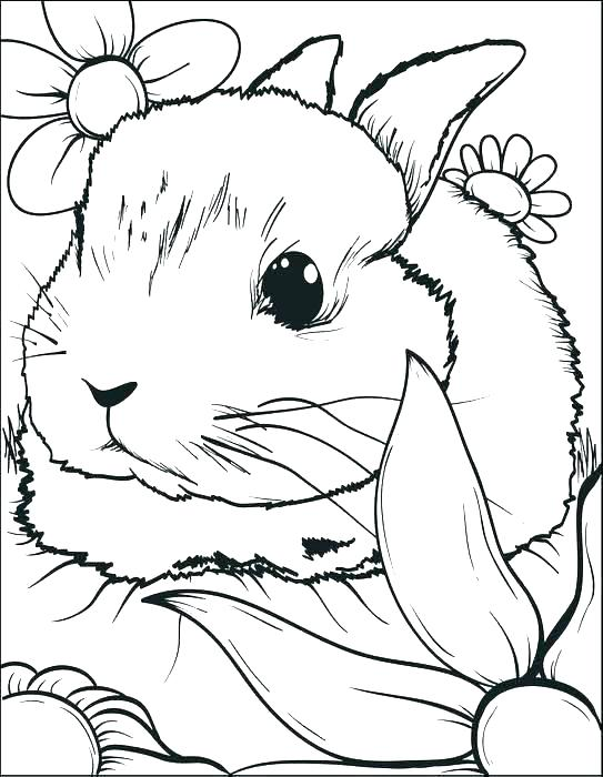 543x700 Easter Rabbit Colouring Pages Rabbit Coloring Page Rabbit Coloring