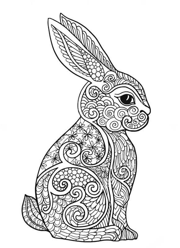 581x800 Best Coloring Rabbit Images On Adult Coloring