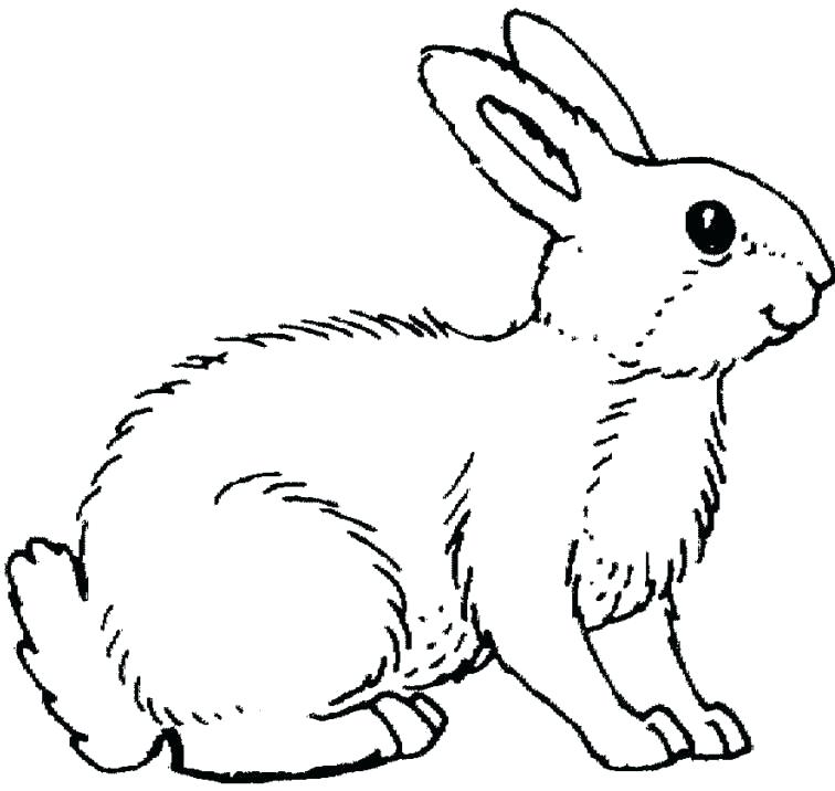 756x716 Easter Bunny Coloring Pages Cute Bunny Coloring Pages Printable