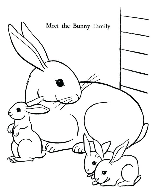 670x820 Rabbit Coat Colors Pictures Kids Coloring Free Bunny Coloring Page