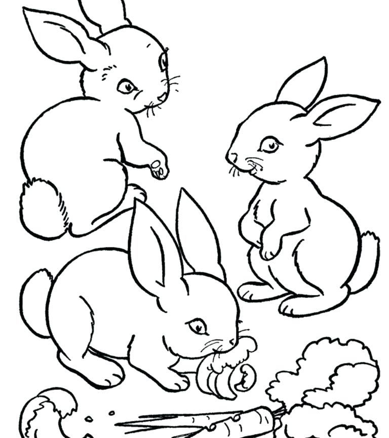 768x864 Easter Bunny Coloring Pages Free Printable Bunny Coloring Page