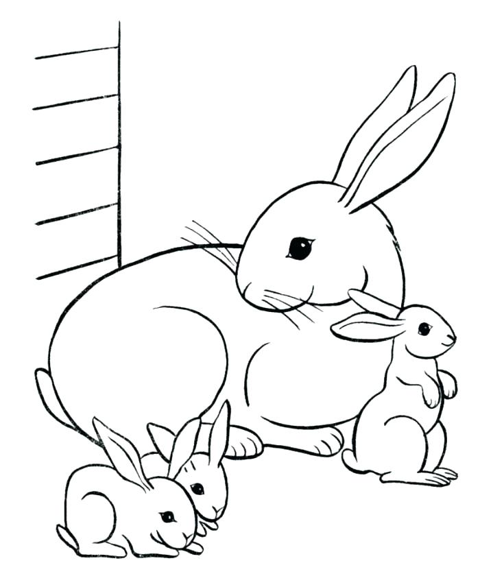 700x856 Coloring Bunny Printable Coloring Pages Free Rabbit Sheets