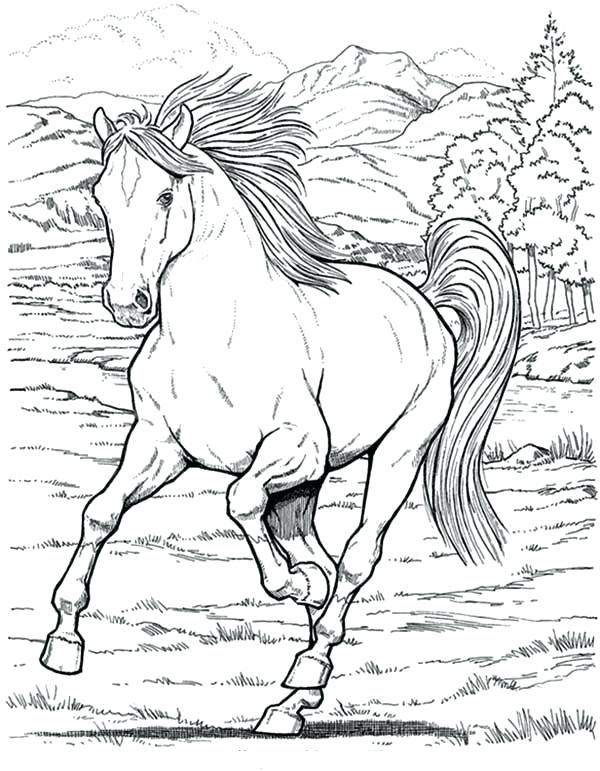 600x771 Horse Color Page Wild Horse Coloring Pages To Print Horse Racing