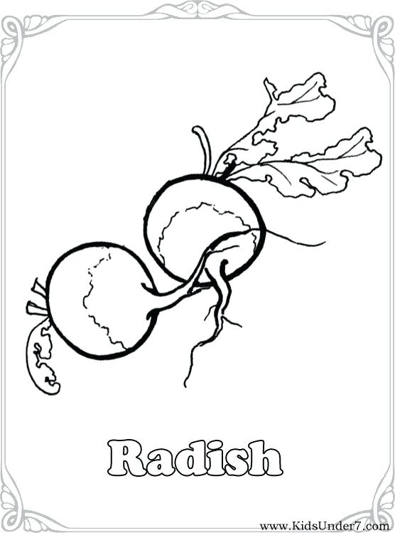 556x749 Vegetable Coloring Pictures Top Vegetable Coloring Pages Pic