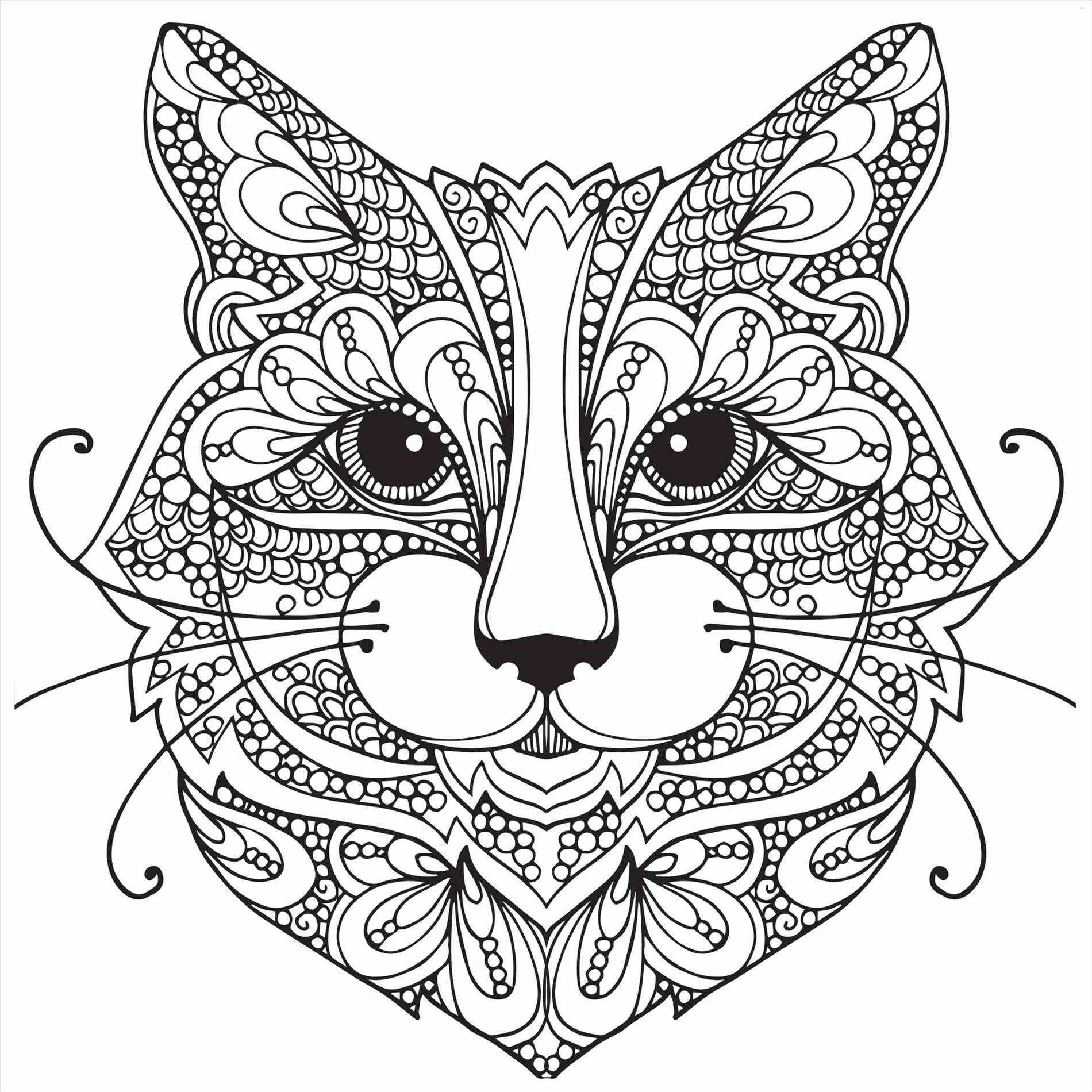 1900x1900 Marvelous Pete The Cat Coloring Page Momjunction Pics Of Ragdoll