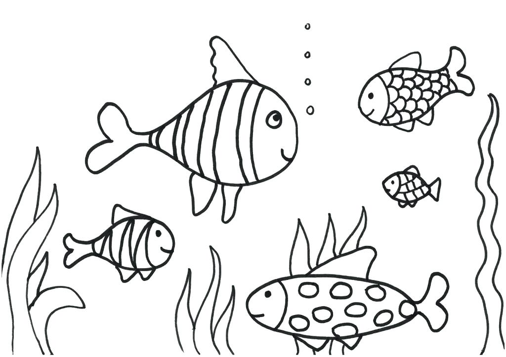 1024x723 Rainbow Fish Coloring Page Free Pages For Kids Fuhrer Von