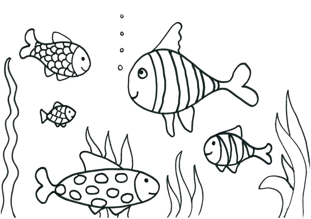 1024x723 Remarkable Rainbow Trout Coloring Page Coloring Pages Free Kids