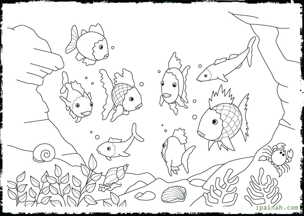 1024x728 Remarkable Rainbow Trout Coloring Page Rainbow Trout Coloring Page