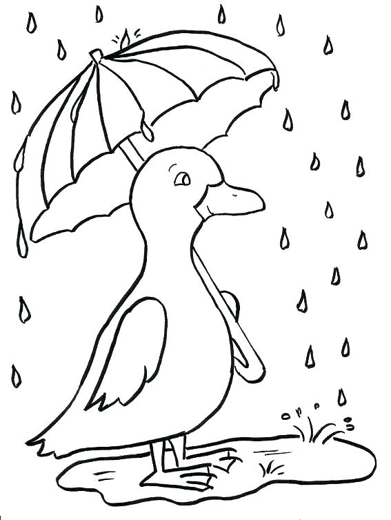 567x753 Duckling Coloring Pages Autoinsuranceny Club