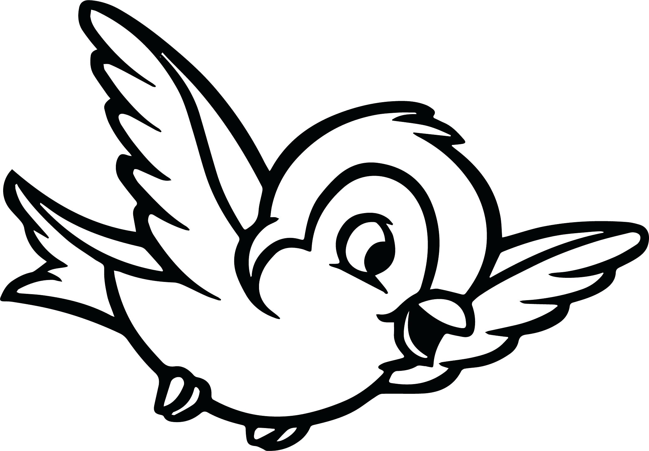 2067x1435 Ideas Of Coloring Pages Of Birds In The Rainforest For Coloring