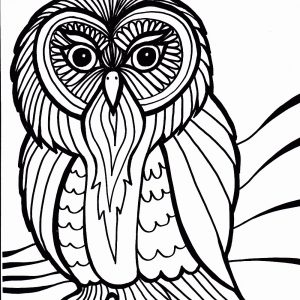 300x300 Coloring Pages Of Birds In The Rainforest Best Of Drawn Animal