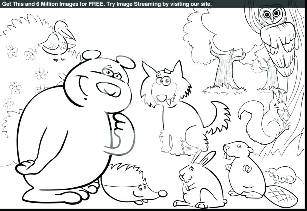 1024x704 Rainforest Coloring Pages To Print