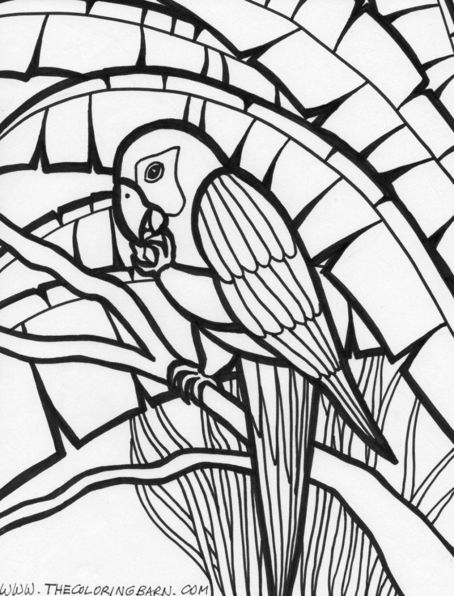 918x1204 free printable rainforest coloring pages