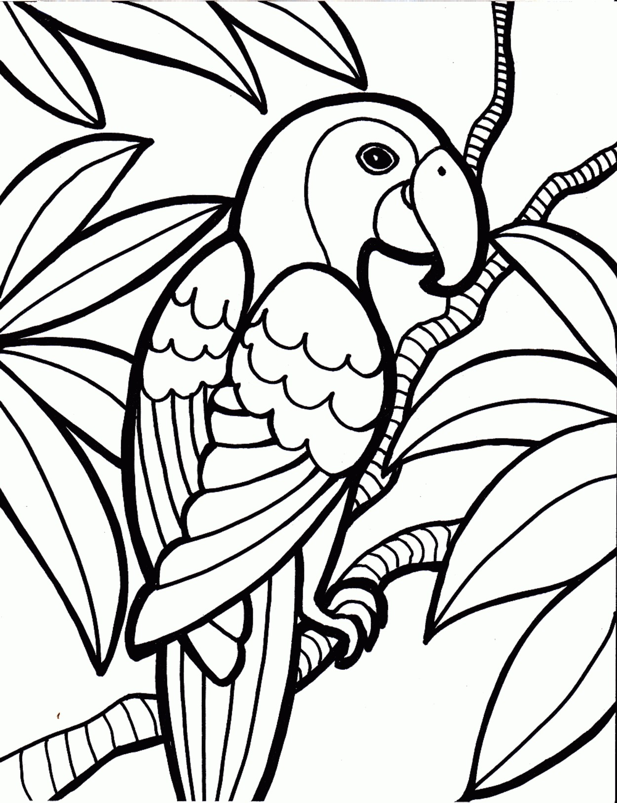 1250x1626 New Rainforest Coloring Pages To Print