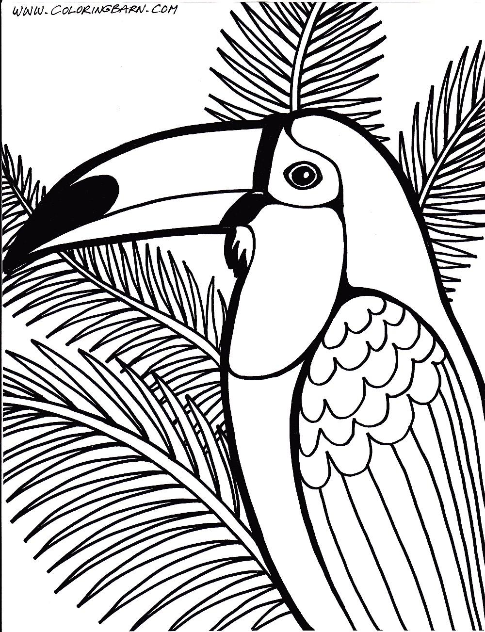 1000x1303 Rainforest Coloring Pages
