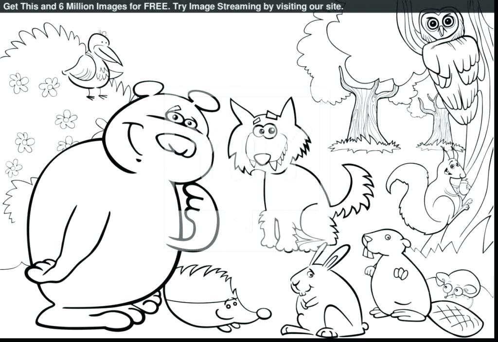 1024x704 Rainforest Colouring Pages To Print Large Size Of Coloring Pages