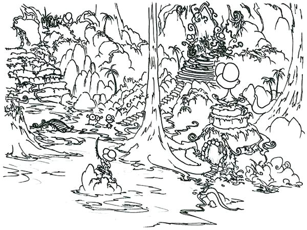 600x449 Daintree Rainforest Coloring Pages Picture Coloring Page Download