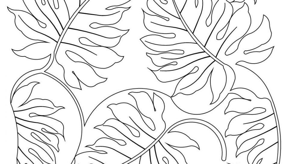 960x544 Rainforest Coloring Pages Rainforest Plants Coloring Pages Nice