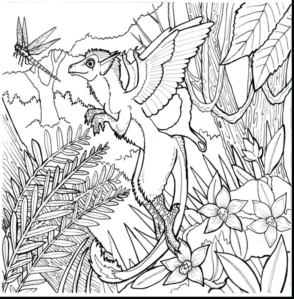 1024x1041 Coloring Pages Rainforest Coloring Pages Plants For Adults Free