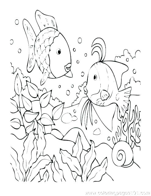 495x640 Rainforest Animals Coloring Pages Printable Kids Coloring Animals