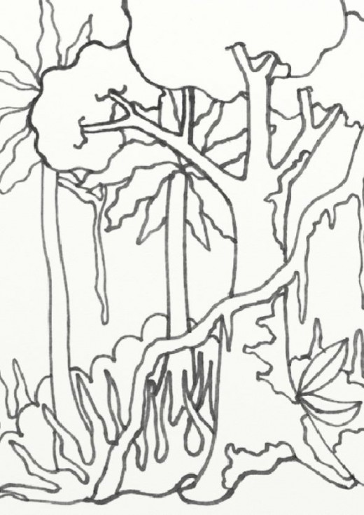 520x735 Rainforest Coloring Pages Inspirational Rain Forest Trees Coloring
