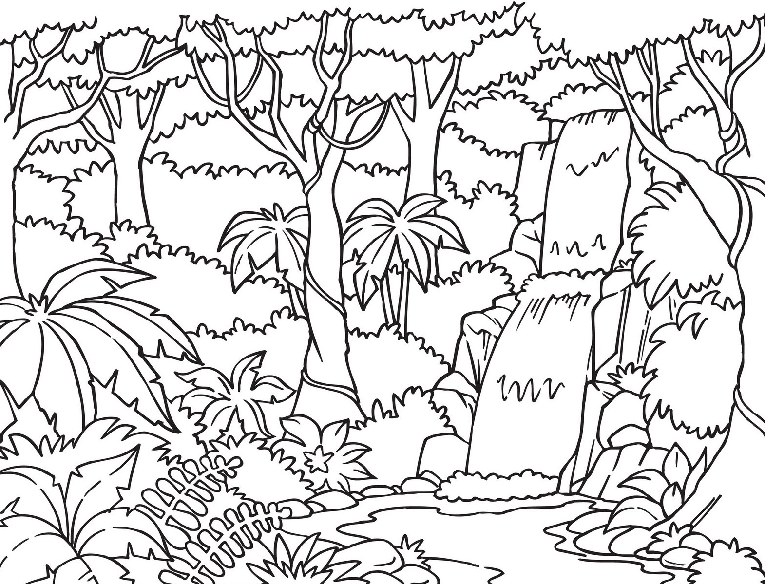 1570x1199 Rainforest Coloring Pages To Print