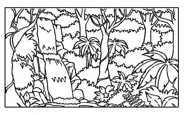 640x400 Rainforest Coloring Pages Tropical Coloring Pages Rainforest Trees