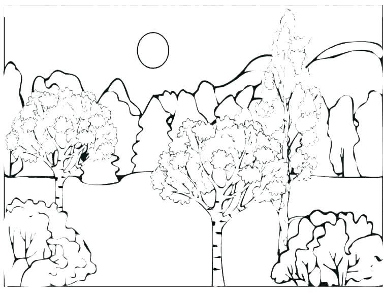 756x585 Rainforest Coloring Pages