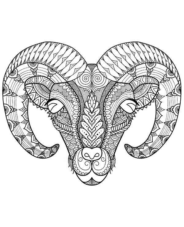 600x740 Muflon, Ram Coloring Page For Adults Free To Print And Color