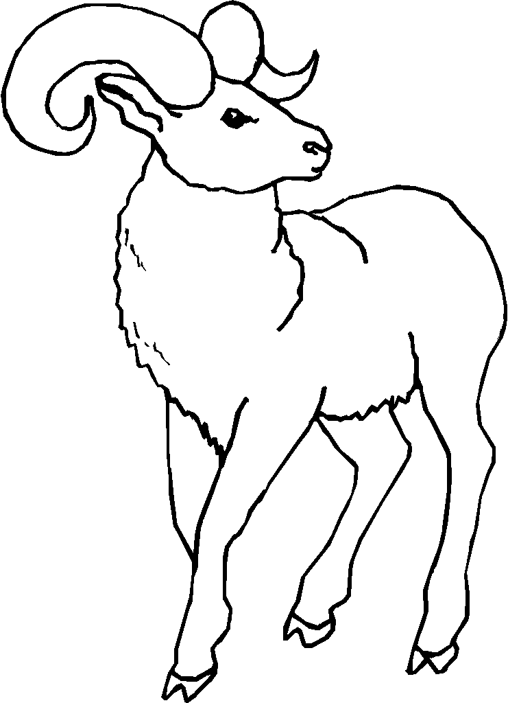 741x1024 Ram Coloring Page Printable