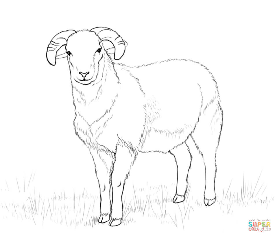 958x824 Ram Download For Coloring Page