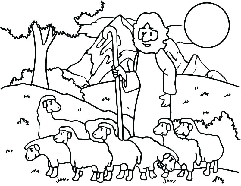800x617 Sheep Outline Plus Ram Outline Coloring Page Free Printable