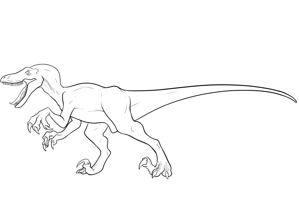 The Best Free Velociraptor Coloring Page Images Download From 157