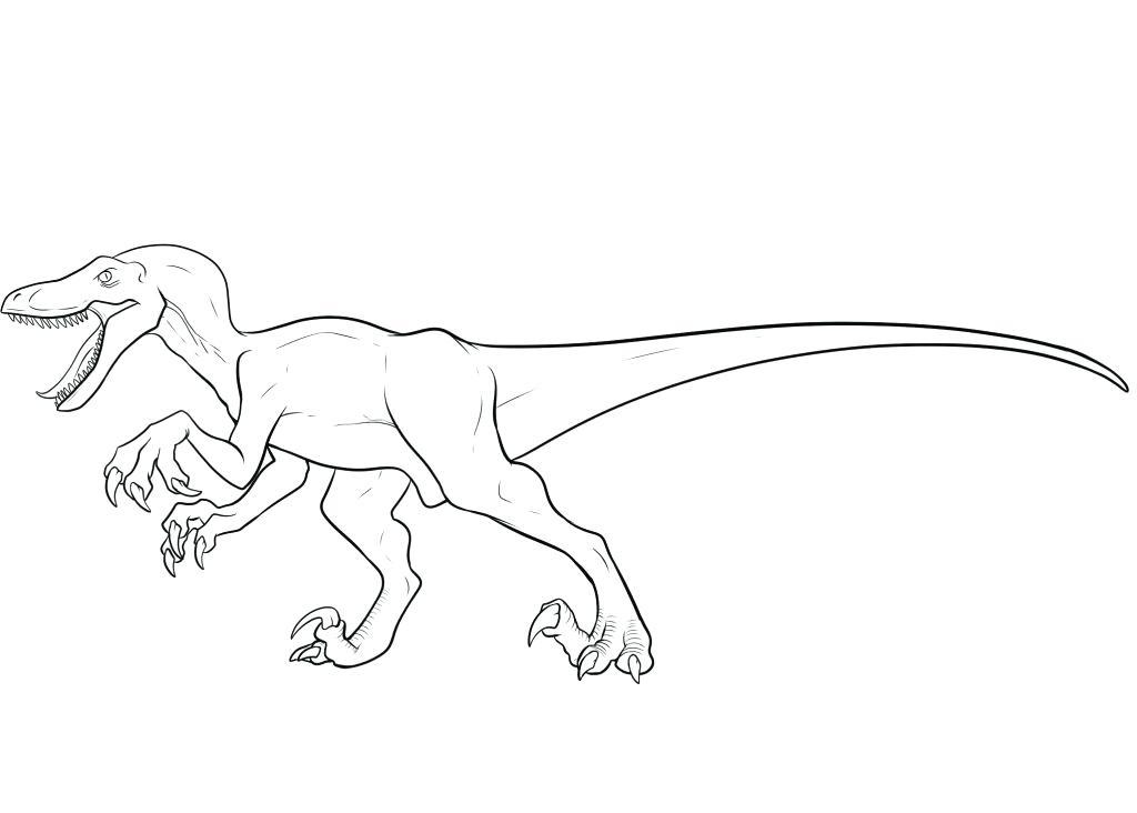 1024x732 Velociraptor Para Colorear Coloring Pages Imagenes De Velociraptor