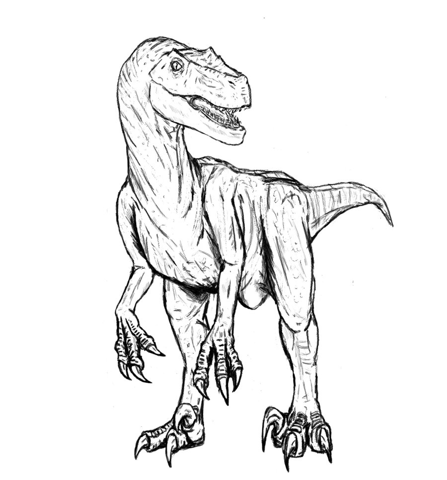 900x966 Velociraptor Coloring Pages