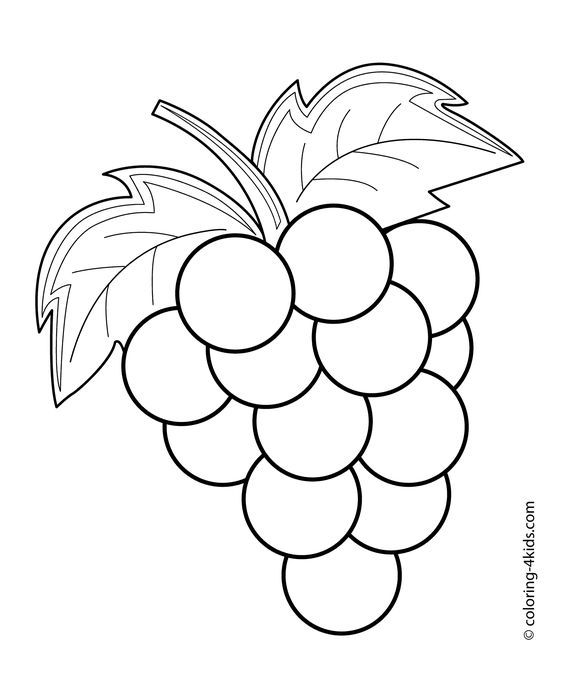 564x686 Grapes Fruits And Berries Coloring Pages For Kids, Printable Free